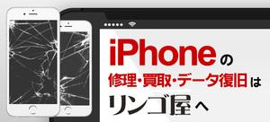 リンゴ屋 鳥取駅南店